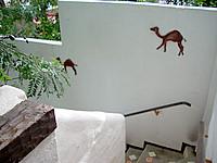 stairs Hotel Casa Blanca