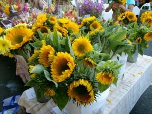 SunflowersattheMarket